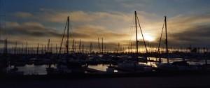 ventura boats marina